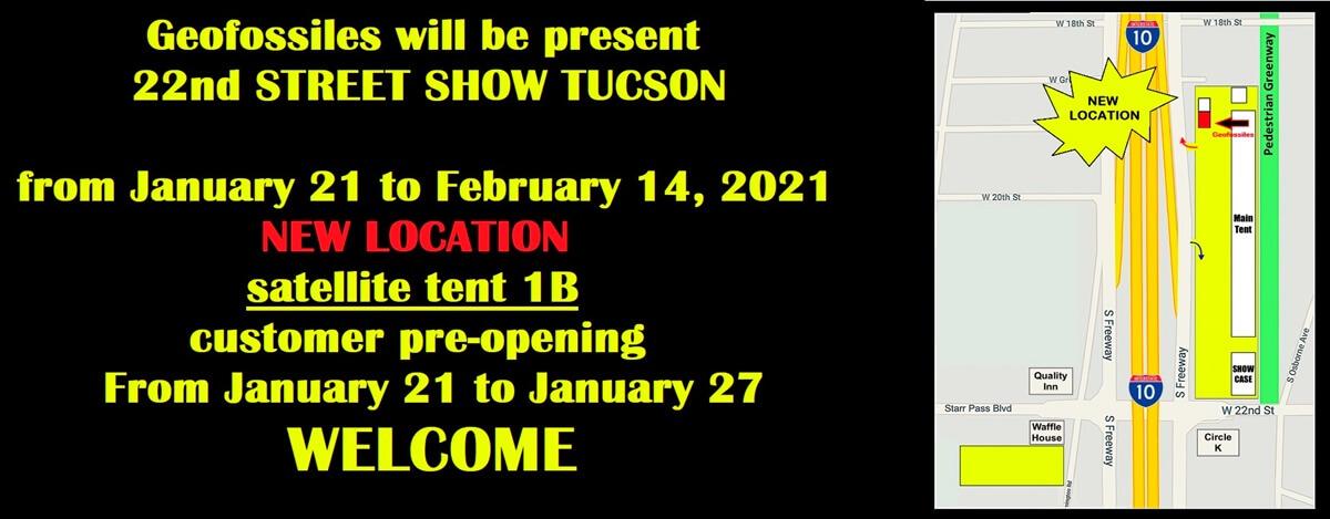 New geofossiles LLC on tucson 2020