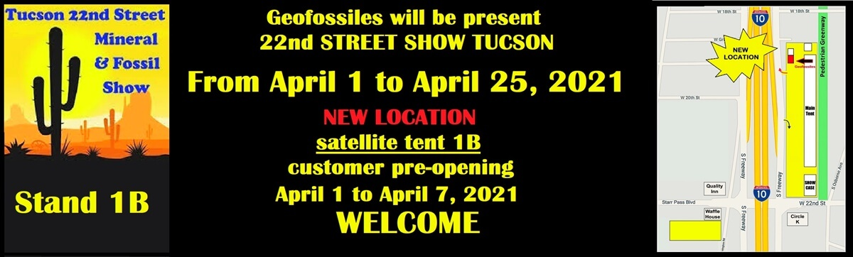 NEW GEOFOSSILES LLC TUCSON SHOW APRIL 2021