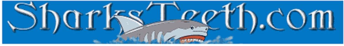 Sharksteeth.com Logo