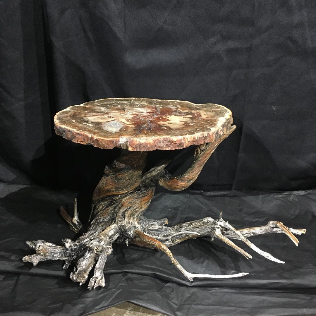 A mini Petrified Wood table