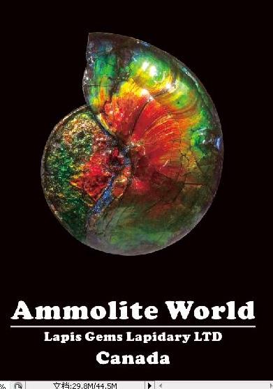 Ammolite World Ltd. Image